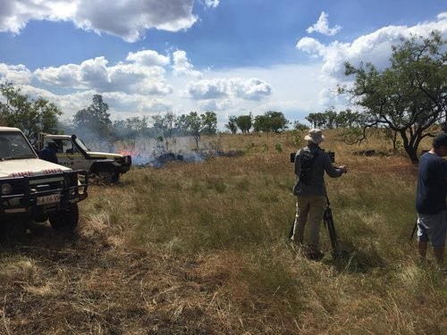 Film crew chases hawk that hunts with fire